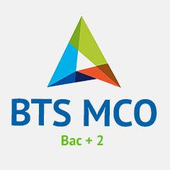BTS MCO en alternance / Management Commercial Opérationnel en alternance à lille